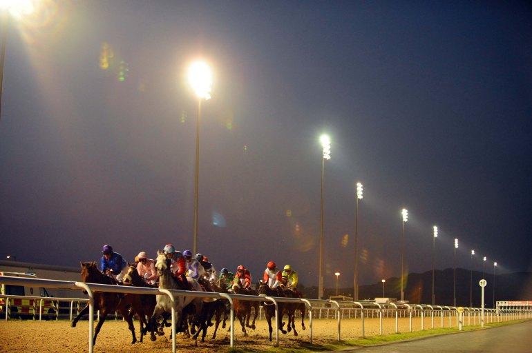 horse dark.jpg