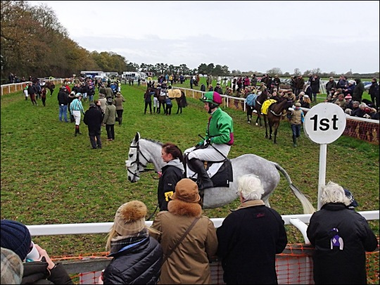 Image result for point to point ireland