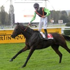 'NEGANO GOLD' COULD BE THE SLEEPER IN THE ARC