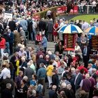 THE GALWAY RACES: NEXT TIME OUT WINNERS